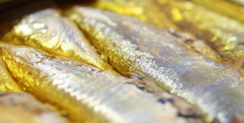 Dans le top ten des gourmands : la sardine millésimée la Belle Iloise